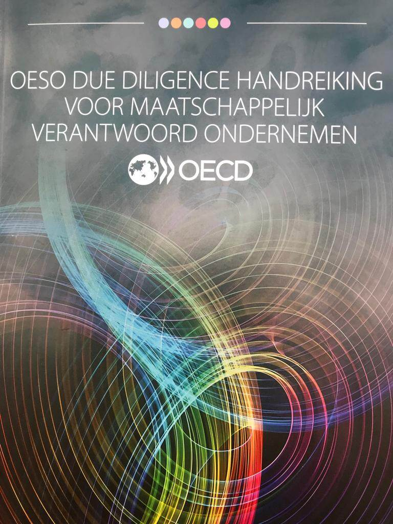 OESO Due Diligence Handreiking